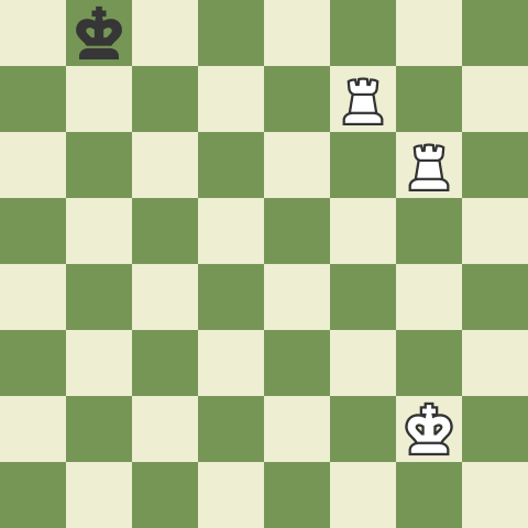 Checkmate with Two Rooks