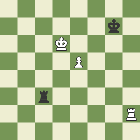 Typical Rook Endgame Mistakes I: Short & Long